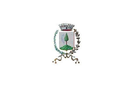immagine con logo comune collio